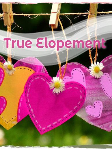 True Elopement by Annemarie Juhlian
